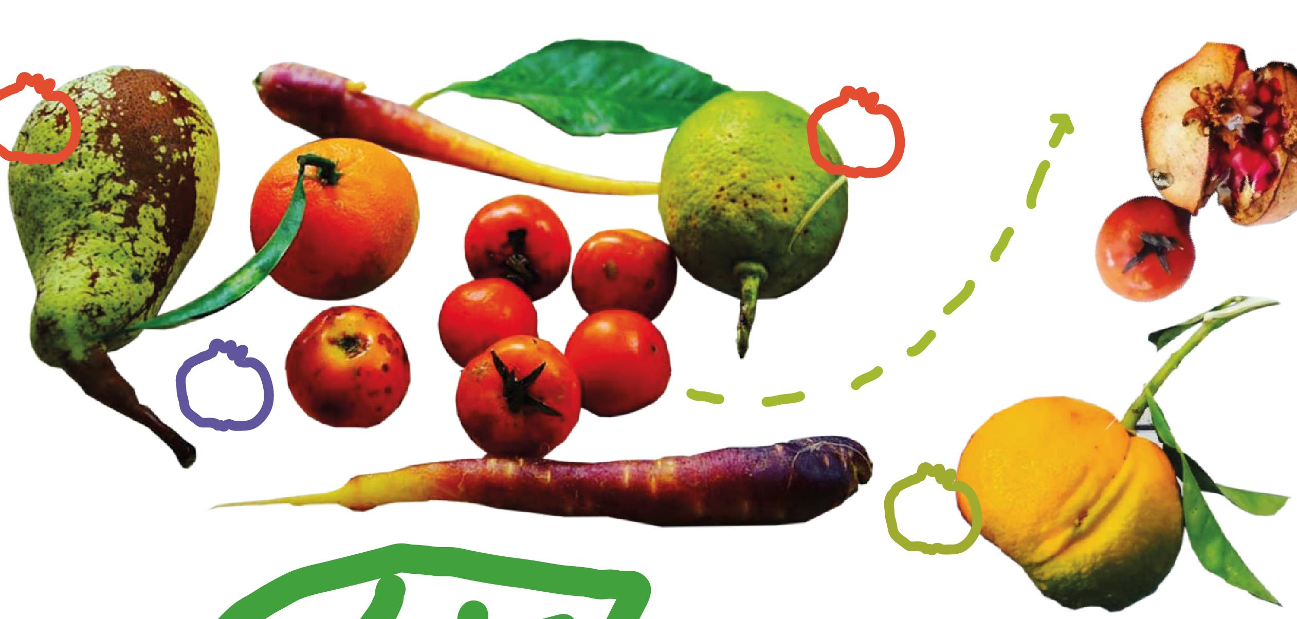 Se il pomodoro ha un difetto estetico, perché non è OK?