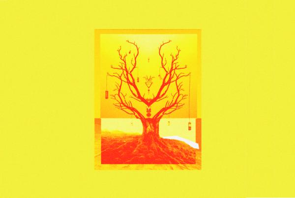 I telefoni non crescono sugli alberi